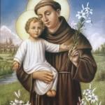 Sv. Antun