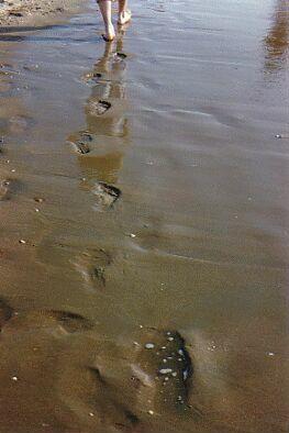 trag_u_pijesku