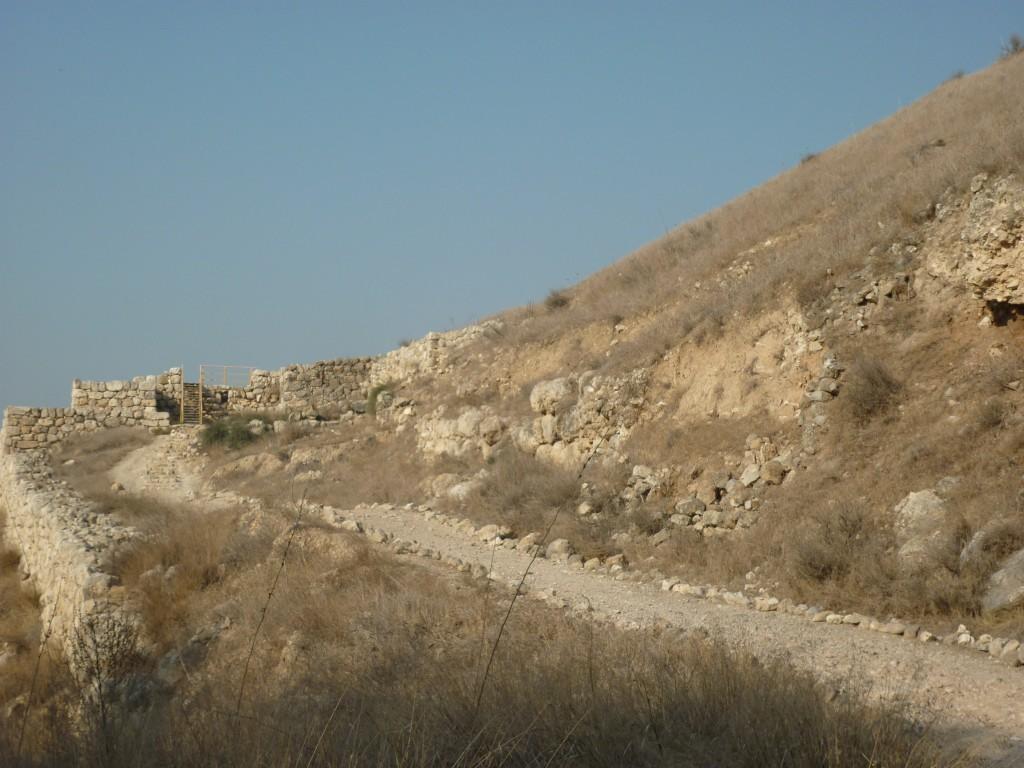 Shepela beth semesh, maresha, lachish 227 (Medium)