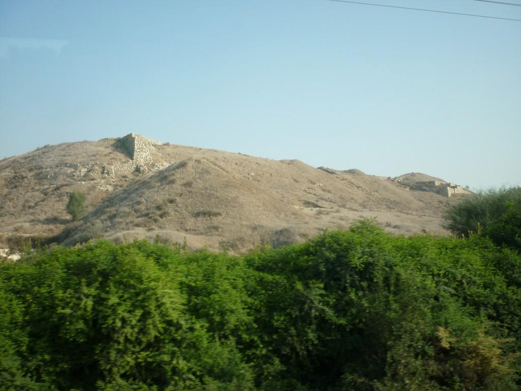 Shepela beth semesh, maresha, lachish 216 (Medium)