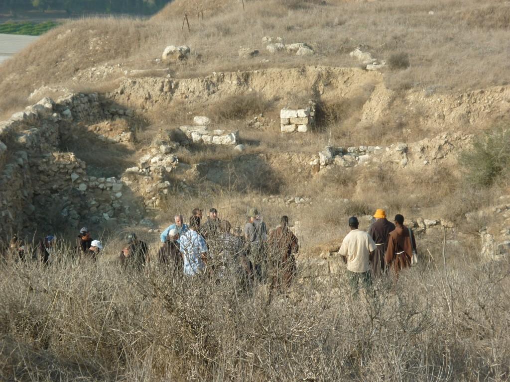 Shepela beth semesh, maresha, lachish 231 (Medium)